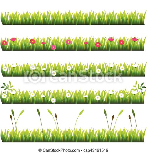 grass with flowers - csp43461519