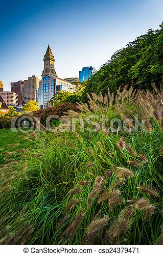 Grasses and the Custom House Tower in Boston, Massachusetts. - csp24379471