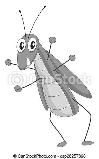Grasshopper - csp28257898