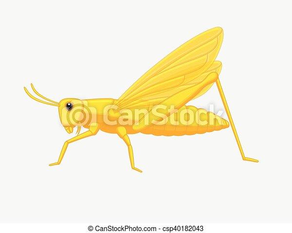Grasshopper - csp40182043