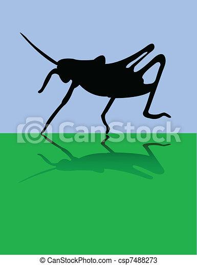 Grasshopper - csp7488273