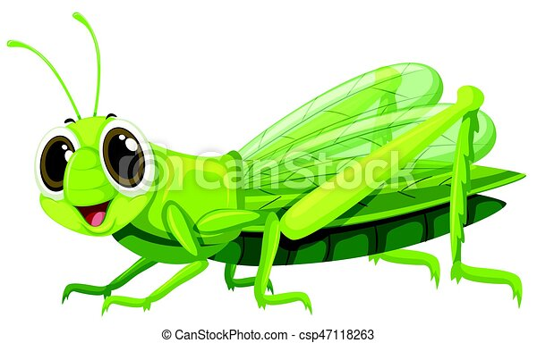 Grasshopper with happy face - csp47118263