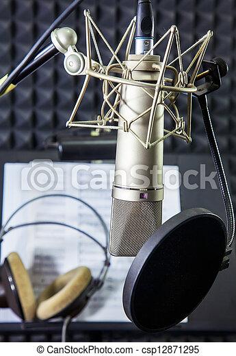 gravando, microfone, condensador, sala, vocal - csp12871295
