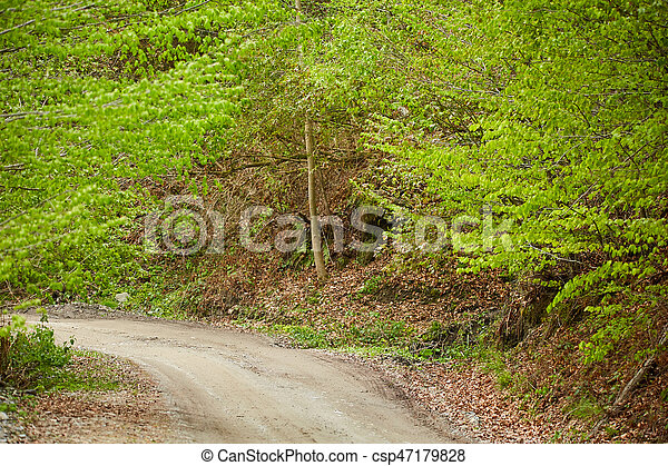 Gravel road in the mountains - csp47179828