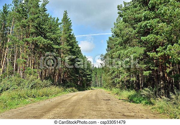 Gravel road in the woods - csp33051479