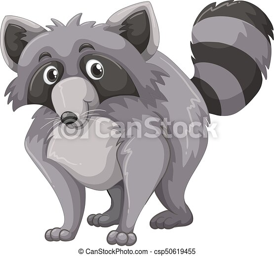 Gray raccoon with happy face - csp50619455