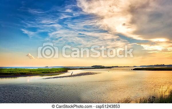 Great Blue Heron enjoying a golden Chesapeake Bay sunset - csp51243853