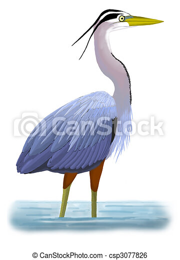 great blue heron ardea herodius rh canstockphoto com heron clipart black and white heron bird clipart