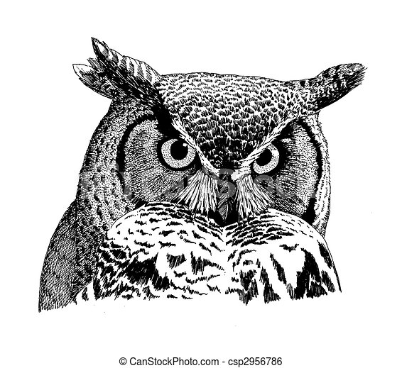 Great Horned Owl - csp2956786