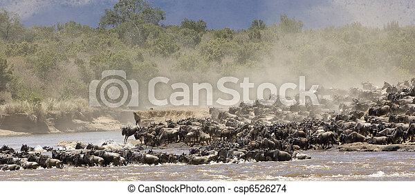 Great Migration - csp6526274