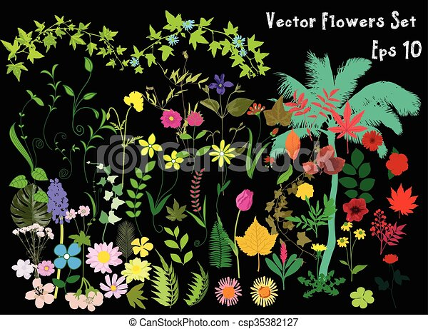 Great set of flowers - csp35382127
