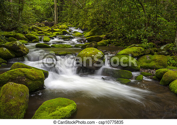 Great Smoky Mountains National Park Gatlinburg TN Roaring Fork River lush green forest landscape photography - csp10775835