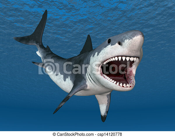 great white shark computer generated 3d illustration with a rh canstockphoto com great white shark image clipart Shark Tank Clip Art