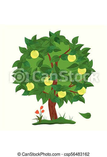 Green Apple Tree With Apples Fruit Isolated On White Background