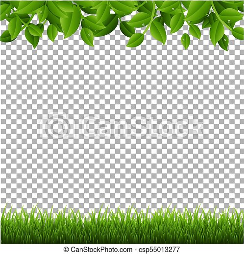 grass transparent background. Green Branches And Grass Transparent Background - Csp55013277 Grass Transparent