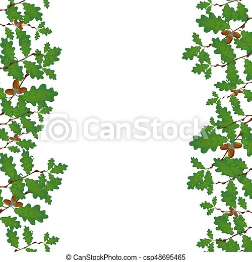 Green branches of oak with acorns on both sides. Volumetric drawing without a grid and a gradient. Isolated on white background. illustration - csp48695465