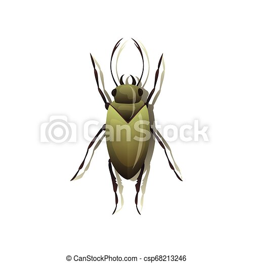 Green bug on white background. Vector illustration. - csp68213246