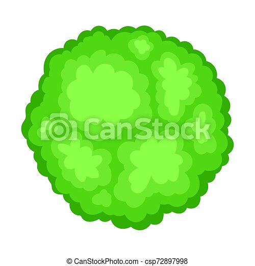 Green bush. View from above. Vector illustration on a white background. - csp72897998