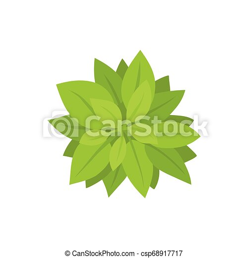 Green bush. View from above. Vector illustration. - csp68917717