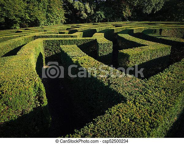 Green bushes labyrinth, landscape gardening design. Labyrinth maze on