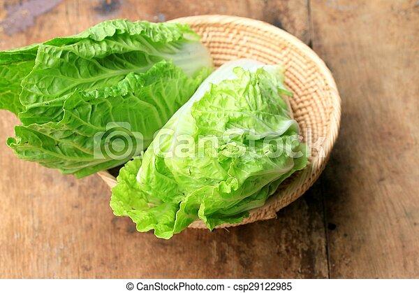 Green cabbage - csp29122985
