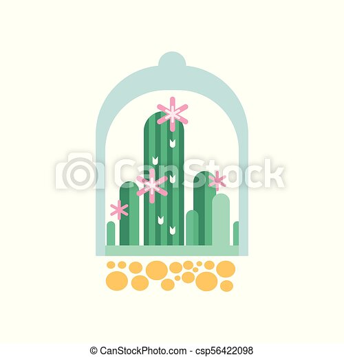 Green Cactus Plants With Pink Flowers Under Transparent Dome Flat