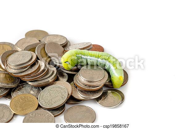 Green caterpillar climbing on Thai coins, money concept. - csp19858167