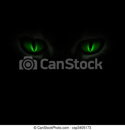 Green cat\'s eyes glowing in the dark - csp3405173