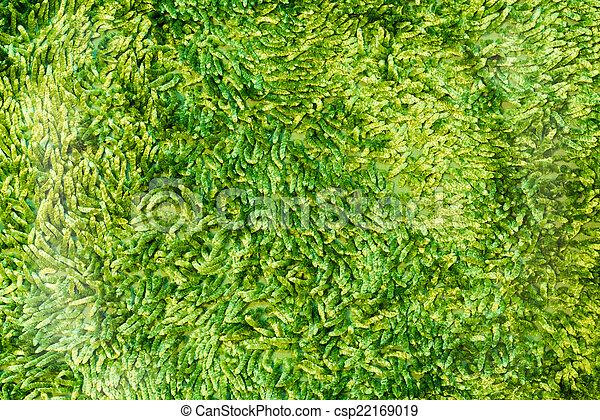 Green cleaning feet doormat or carpet texture - csp22169019