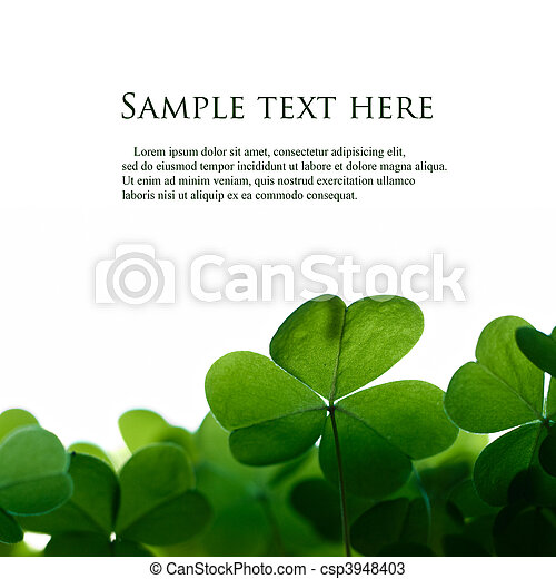 Green clover leafs border with space for text. - csp3948403
