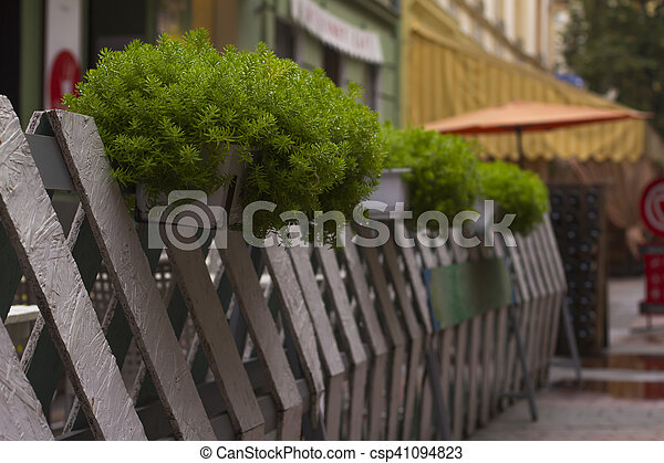 Green decor outside a cafe - csp41094823