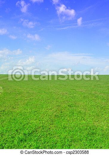 green field - csp2303588