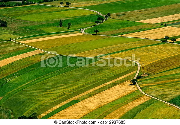 Green fields aerial view before harvest - csp12937685
