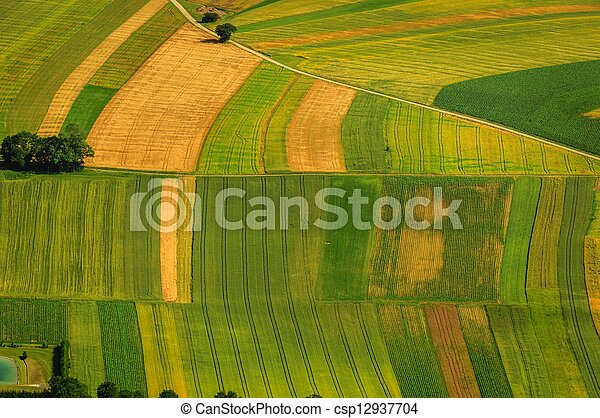 Green fields aerial view before harvest - csp12937704