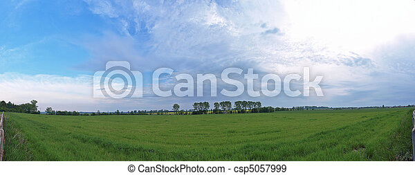 Green fields - csp5057999