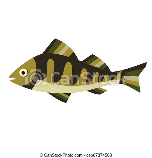 Green fish flat illustration on white - csp67374563