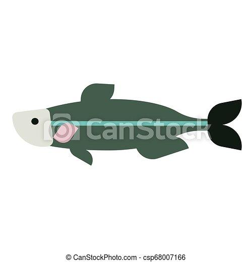 Green fish flat illustration on white - csp68007166