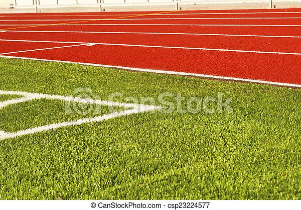 Green football field grass. Stadium - csp23224577