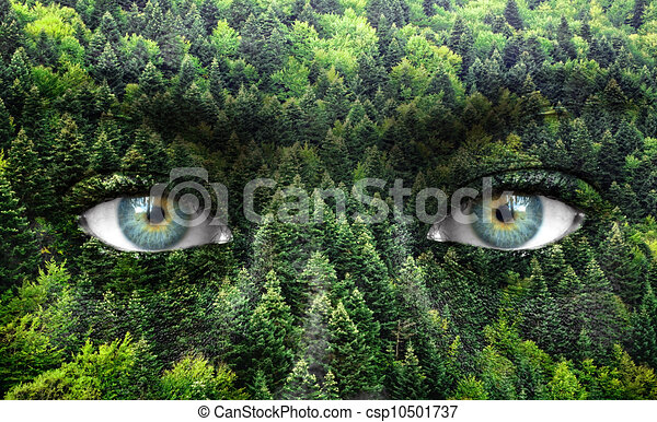 green forest and human eyes save nature concept