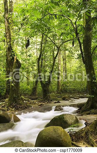 green forest and river - csp1770009