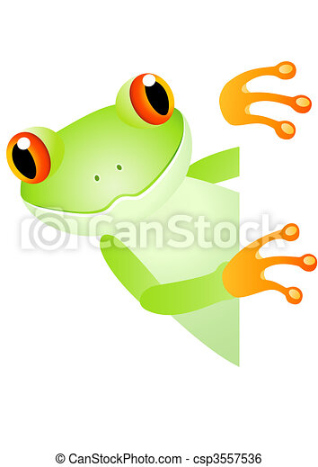 Green frog and blank space - csp3557536
