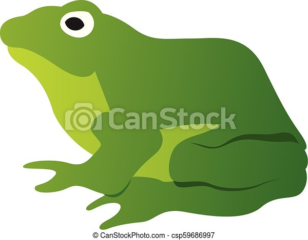 Green Frog - csp59686997
