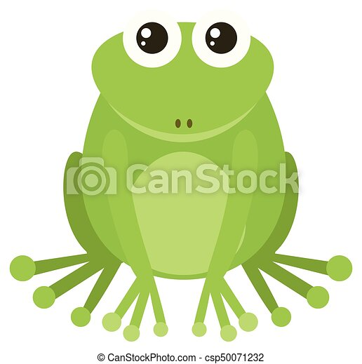 Green frog sitting on white background - csp50071232