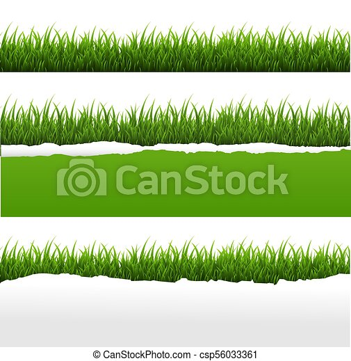 Green Grass And Ripped Paper White Background Set - csp56033361