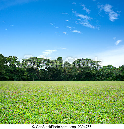 Green grass and trees - csp12324788