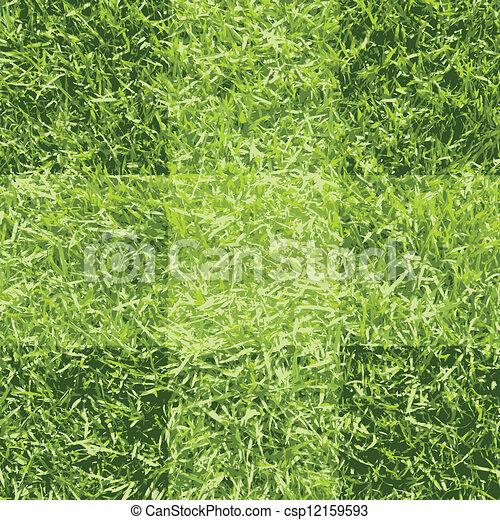 Green grass background - csp12159593