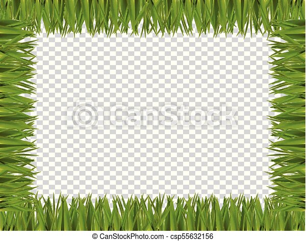 Green grass border frame on transparent background. Green realistic ...