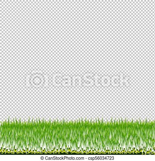 grass transparent background. Green Grass Border Transparent Background - Csp56034723 Grass Transparent Background N