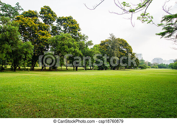 green grass field in big city park - csp18760879