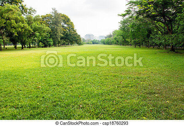 green grass field in big city park - csp18760293